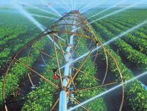 pompa solare in agricoltura