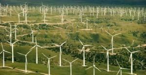 campi eolici